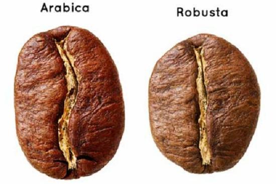 Cà phê Arabica - Robusta hảo hạng 1
