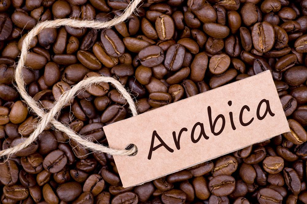 ca-phe-sach-arabica