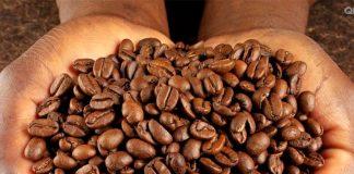 Arabica mộc - Espresso loại 1