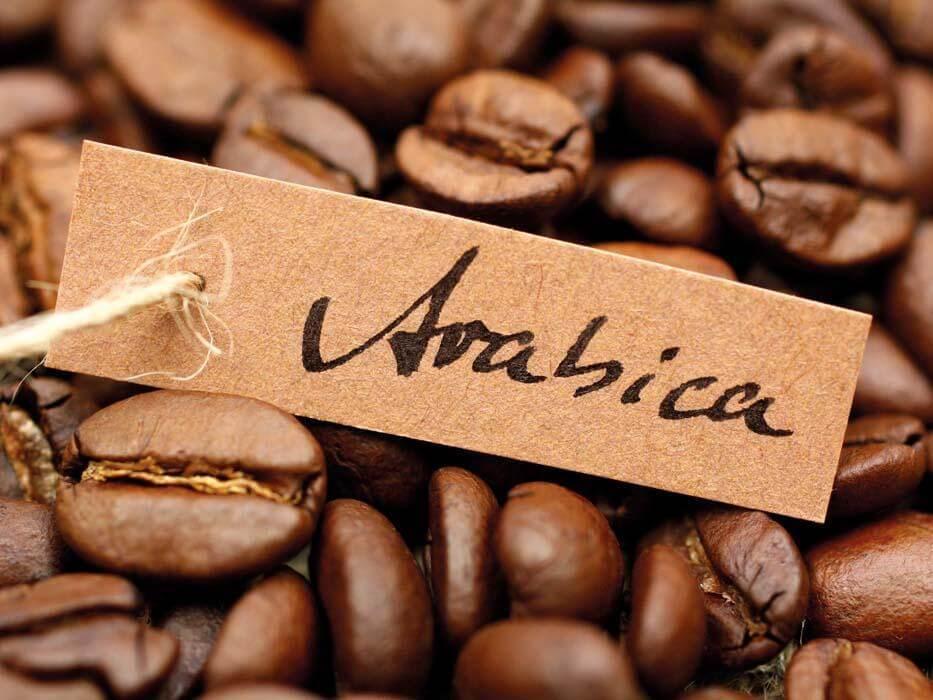 Cà phê Arabica hảo hạng là gì?
