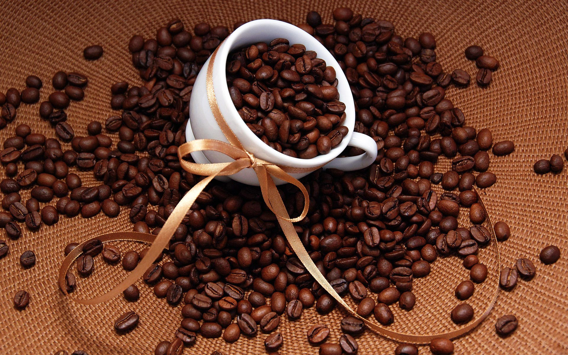cà phê arabica là gì 1