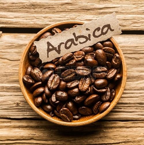 cà phê arabica là gì