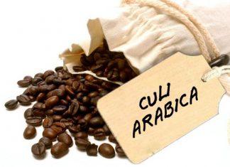 ca-phe-sach-culi-arabica