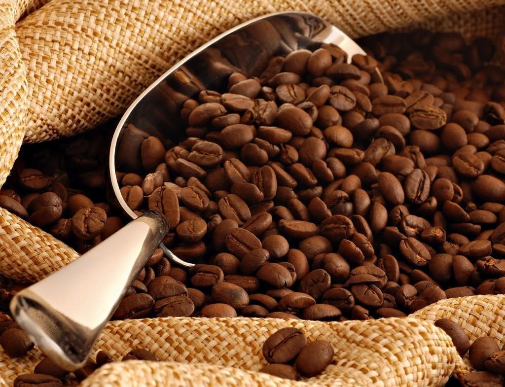 Tìm hiểu cà phê Robusta là gì? Đặc điểm của cafe robusta 2
