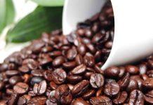 Cà phê hạt Robusta, Arabica, Culi, Moka tỉnh nào ngon nhất