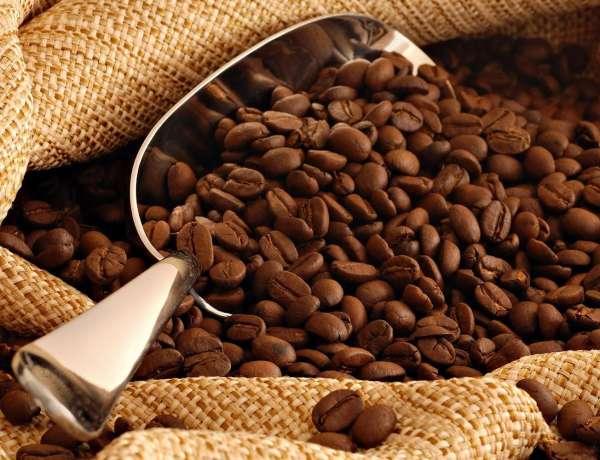 mua cafe hạt sạch ở đâu ngon bổ rẻ tphcm