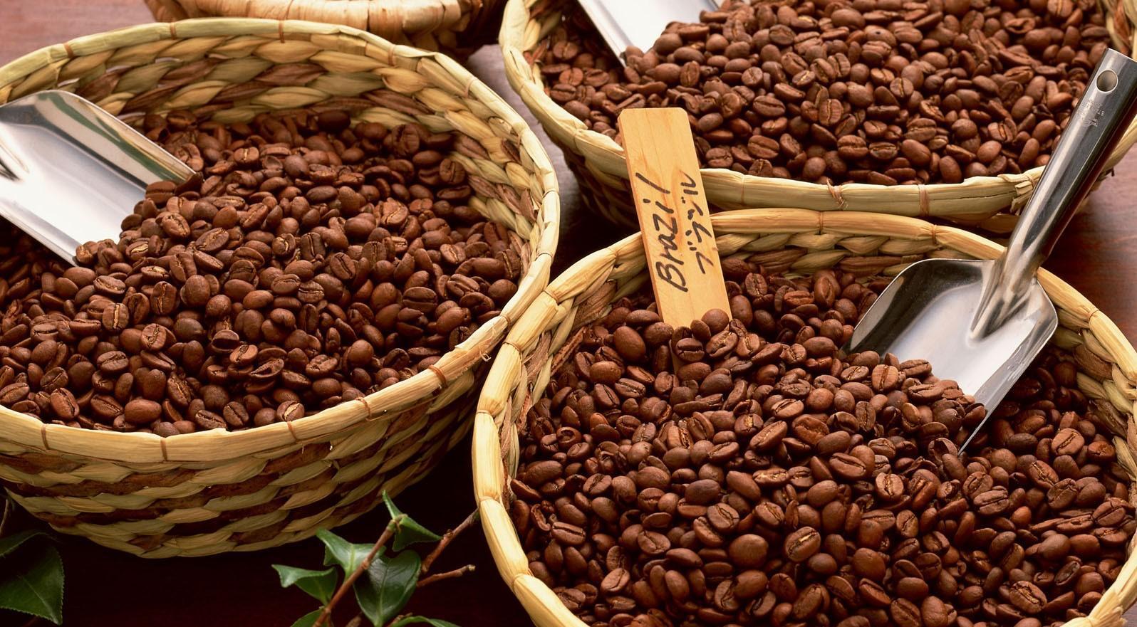 quy trình tạo ra cà phê nguyên chất như thế nào